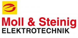 moll_steinig_logo